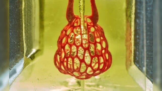 3D Printer Tissue